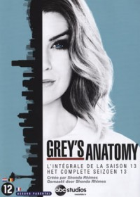 Grey's Anatomy - saison 13