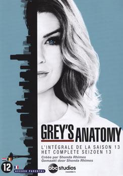 Grey's Anatomy - saison 13